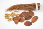 Ginseng & Co gegen Burnout und Fatigue